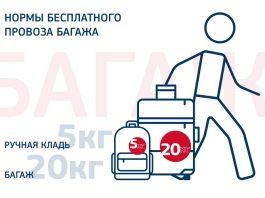 Правила перевозки багажа и ручной клади в самолете.